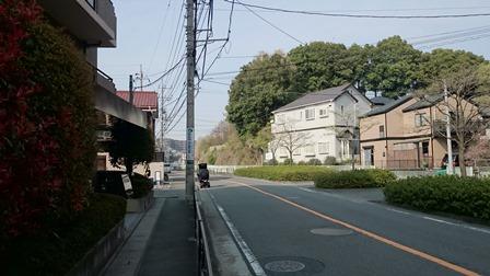 新百合王禅寺ガーデニア前面道路