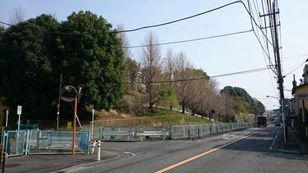 真福寺小学校近隣
