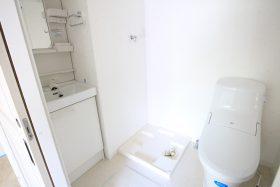 フローラ・テラス 203号室 洗面所