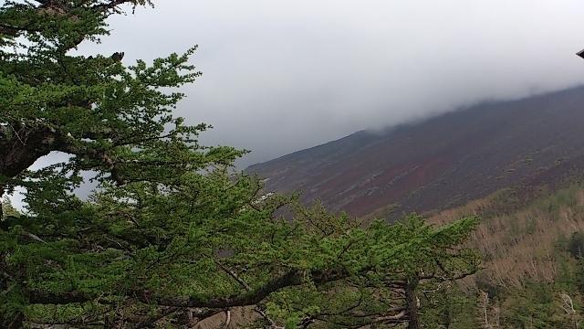 富士山五合目 山 雲