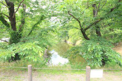 上田城跡公園 お堀