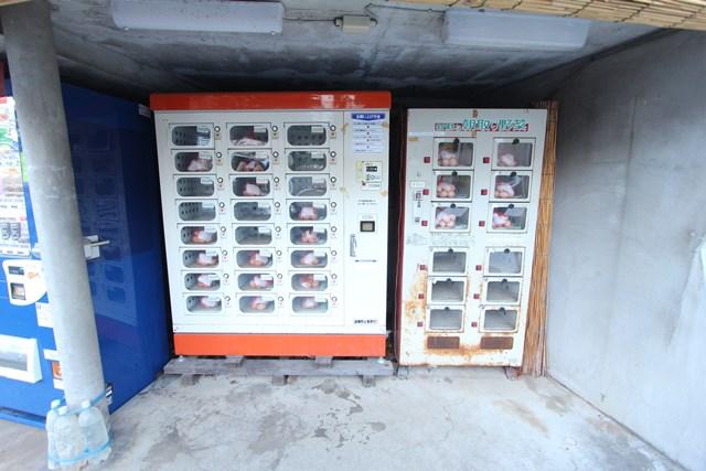 タマゴの自動販売機