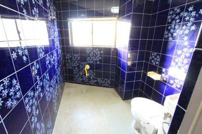第二野村ビル301 トイレ
