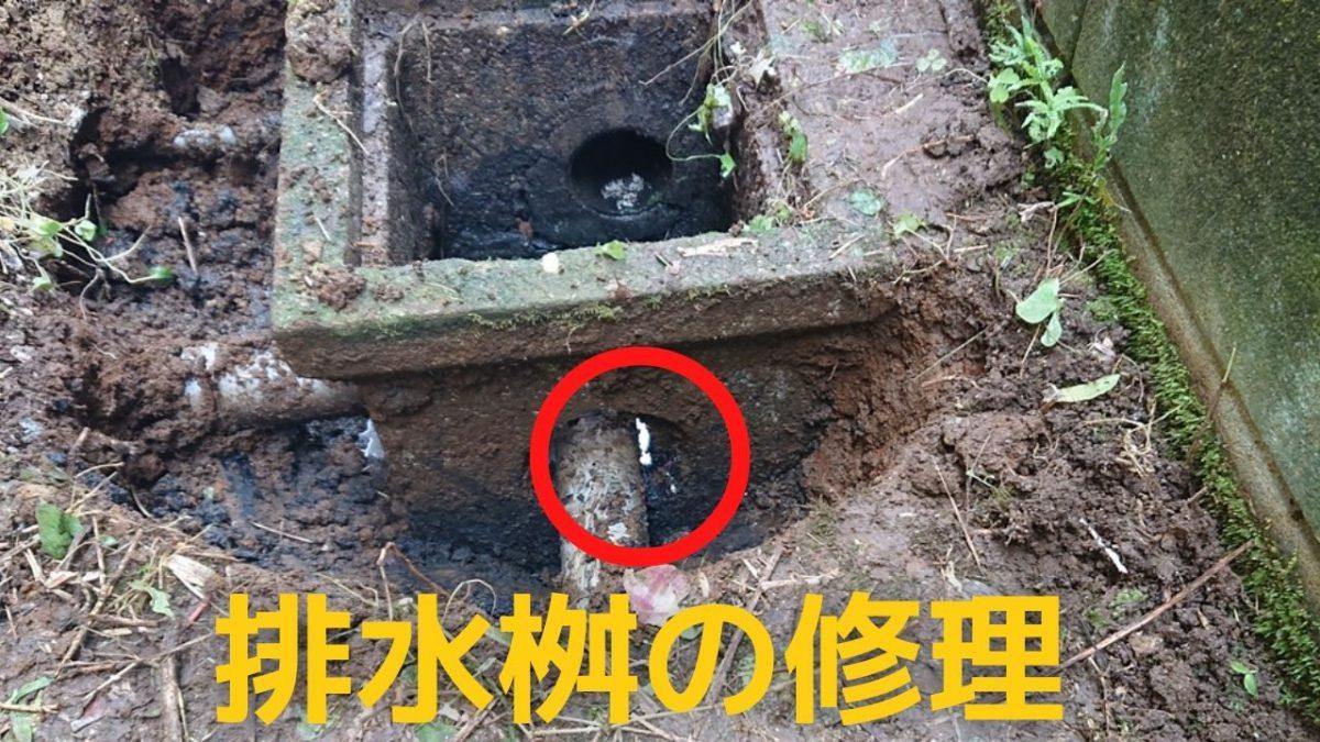 排水桝の修理アイキャッチ
